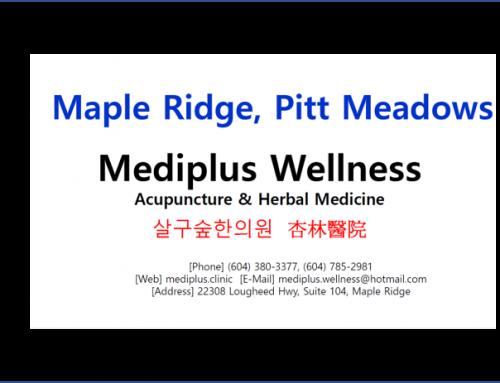 살구숲 한의원(Mediplus) / Jay Ryu
